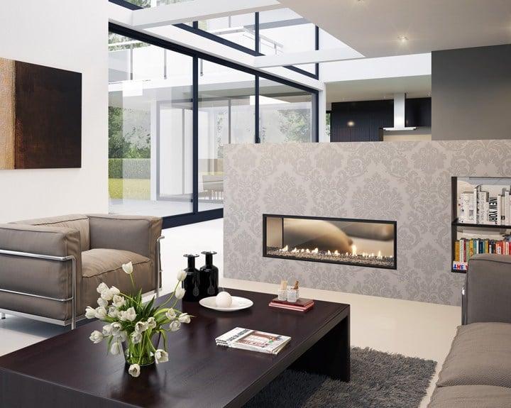 DX Series Fireplace